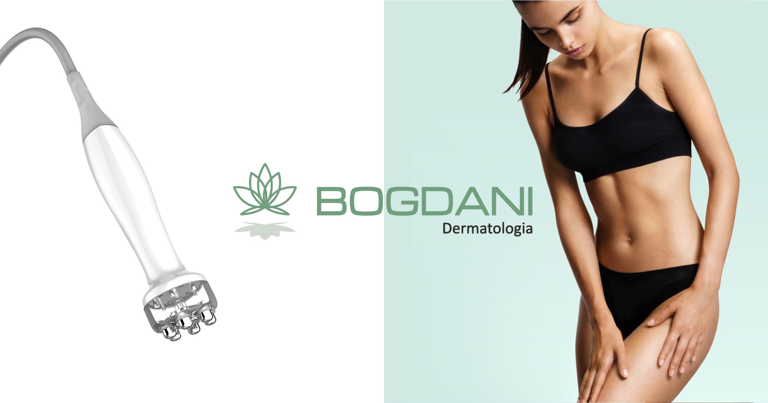 bogdani_1